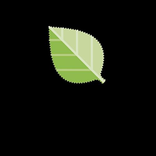 Lenzing Ecovero Viscose